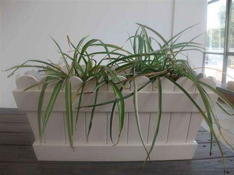 fioriere pvc fioriere pvc vasi e fioriere fioriere in pvc