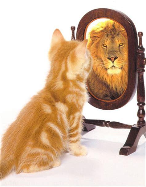 Cermin Estima autoestima y autoimagen amarse a uno mismo