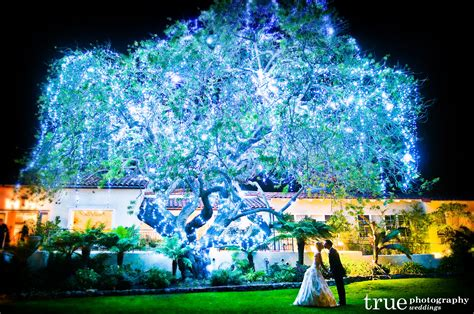top five eco friendly winter wedding themes ecopartytime