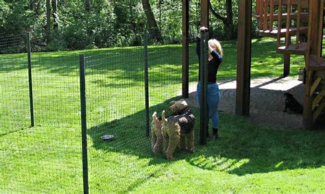 Temporary Backyard Fence by Temporary Fence Ideas