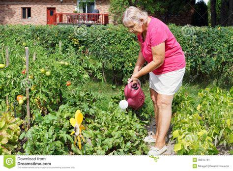 Design Your Bathroom Online by Senior Woman Watering Garden Stock Image Image 33512741
