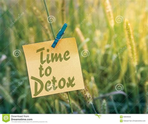 What Is A Time To Detox by Time To Detox Stock Photo Image 60846053