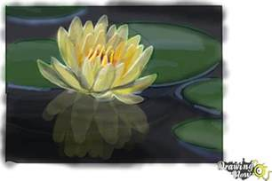 Few Lines About Lotus How To Draw A Lotus Flower Water Drawingnow