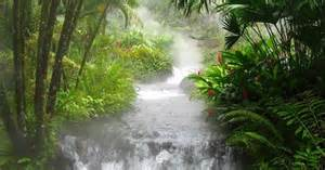beautiful waterfalls with flowers most beautiful waterfalls with flowers most beautiful waterfalls in the world amazing photos