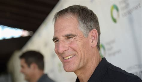 will ncis be renewed for 2016 2017 upcoming 2015 2016 ncis new orleans star scott bakula shocked by franchise