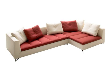 section 10 3 regulating the cell cycle answer key ligne roset 28 images pumpkin by ligne roset