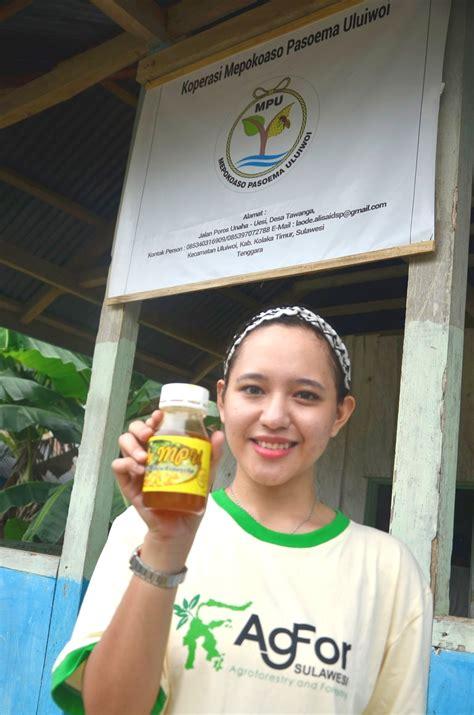 Madu Odeng Madu Hutan Ujung Kulon madu hutan mongabay co id