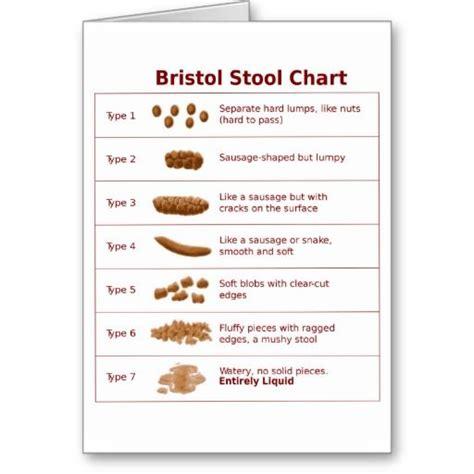 Bristol Stool Chart by Bristol Stool Chart Dietetics