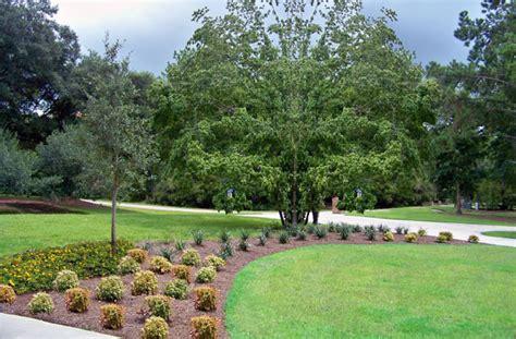 Landscape Design Fees Residential Landscape Design Fees Residential Landscaping