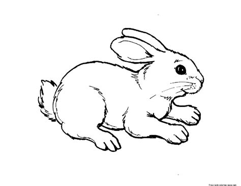 coloring pages animals print out animal rabbit pictures colouring pages for
