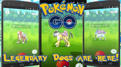 go legendary dogs legendary dogs in go how to catch raikou suicune in go legendary