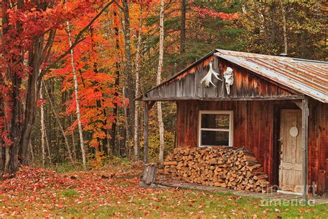 Log Cabins In The Middle Of Nowhere by Cabin In The Middle Of Nowhere Photograph By