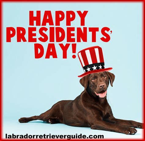 holiday labrador dog memes gallery  special day dog memes labradorretrieverguidecom