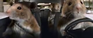 Kia Hamster Commercial 2014 2014 Kia Soul Commercial With Hamsters Autos Weblog