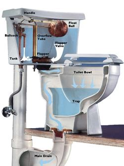 how does plumbing work toilets toronto drain services drainage contractor in