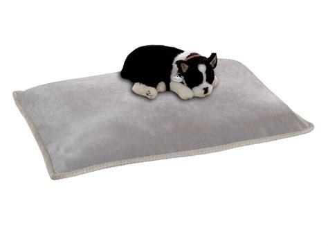 cuscini animali cuscino per animali collezione pet by magniflex by alessanderx