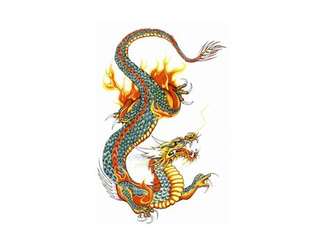 oriental tattoo designs free free pictures of dragon tattoos clipart best