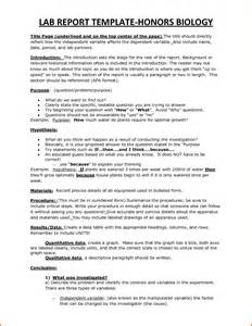 lab report template doc 585650 lab report template lab report template 24
