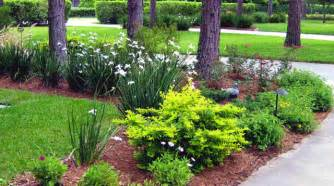 landscape design images northern inspired landscape design for ta fl traditional landscape ta by ta