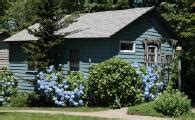 Beech Tree Cottages Ct by Beech Tree Cottages Visit New