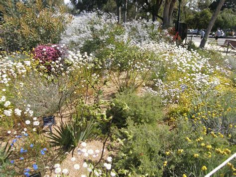 Botanical Gardens Perth Perth Western Australia Park