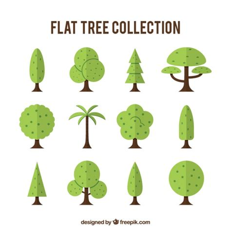 type of tree collection of different types of trees vector free