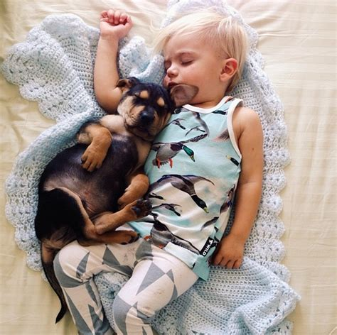 puppy and baby sleeping this puppy and baby are the most adorable nap time pals