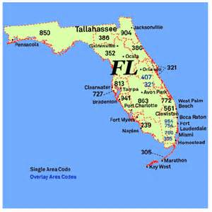 florida area code map 239 area code pictures to pin on pinsdaddy