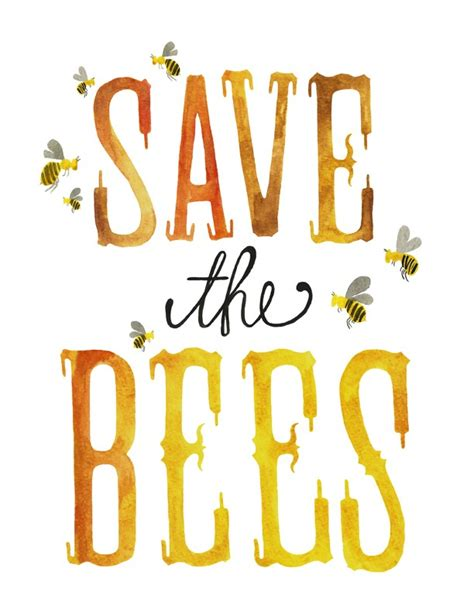 Save The Bee save the bees erin martin
