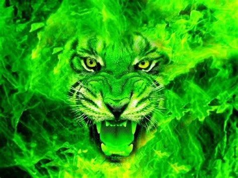 wallpaper green face love this cool green cars green tiger face cool graphics