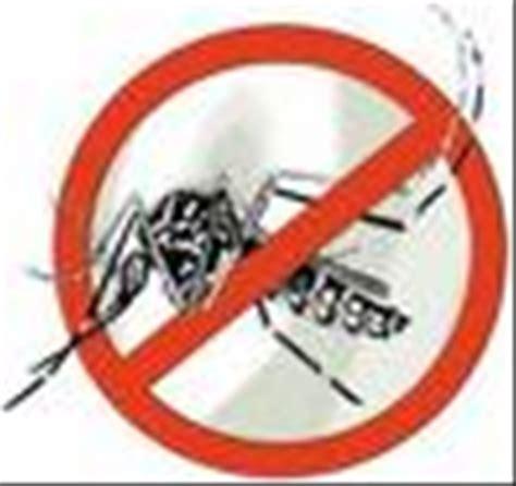 Stop Demam Berdarah Dengue demam berdarah dbd berita kota berbagi segala