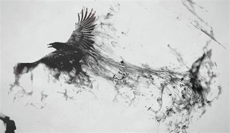 wallpaper dark bird 0 entries in ravens desktop wallpaper group