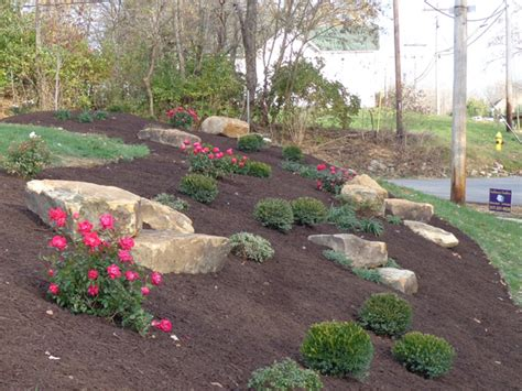 beds and borders ambiance gardens landscaping