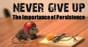 The Importance of Perseverance in Pursuing Your Goals ...