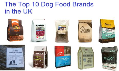best puppy food brand best food uk august 2017 wisemovemanchester co uk