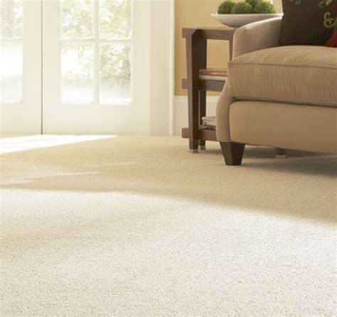 Upholstery Cleaning Dublin by Carpet Cleaning Dublin The Carpet Cleaning Company