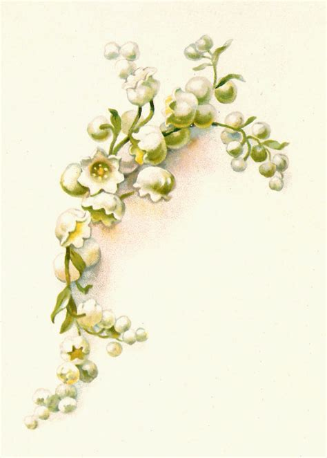 lily of the valley tattoo designs antique images free flower graphic vintage of the