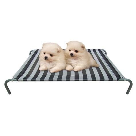 cooling dog bed cooling dog bed find the best elevated dog bed to keep