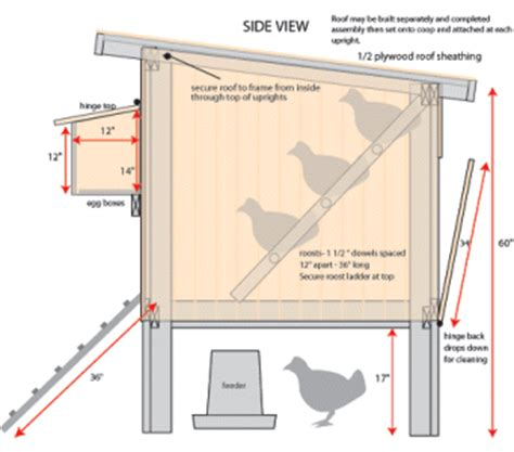 Chicken Coop Floor Plans Free Coop Plans W Detailed Instructions