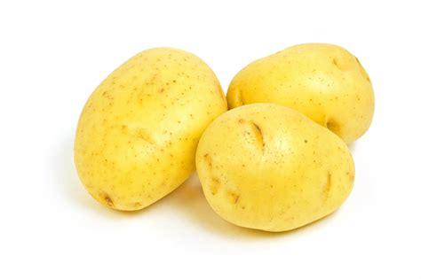 Best Potato by Best Yellow Potato Varieties Yellow Potato Products