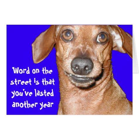 Dachshund Birthday Meme - weiner dog meme dog breeds picture