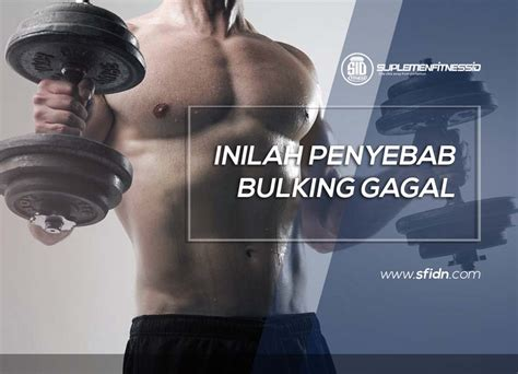 Kaos Diet Gagal penyebab bulking gagal