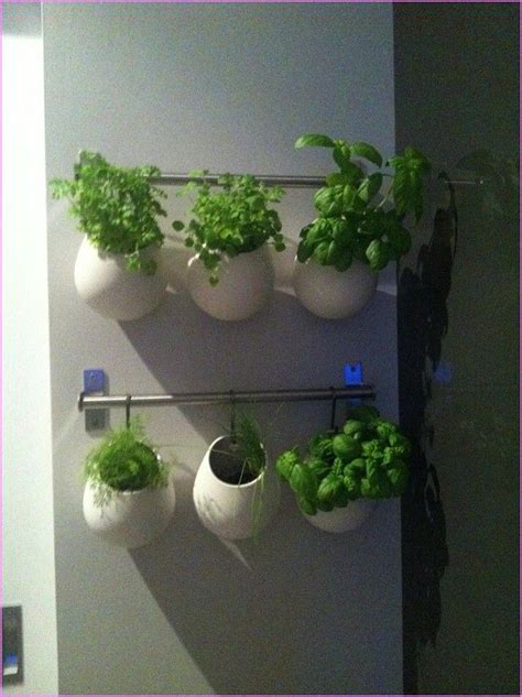 17 best images about indoor herb garden on pinterest
