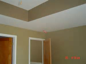 interior paints tlm