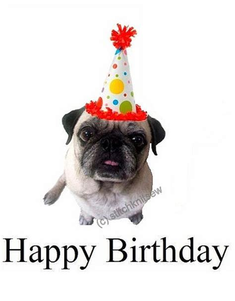 pug birthday pictures printable pug birthday card flickr photo