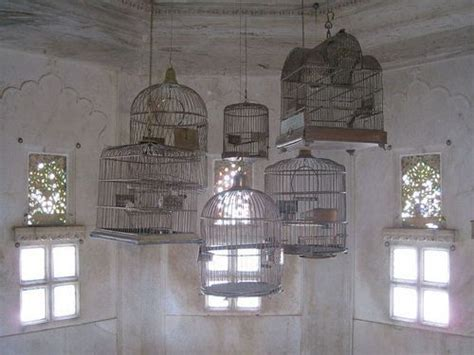 Hanging Bird Cages From Ceiling by Bird Cages Favorite Places Spaces