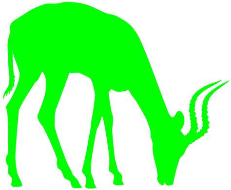 lime silhouette giraffe silhouette free vector silhouettes
