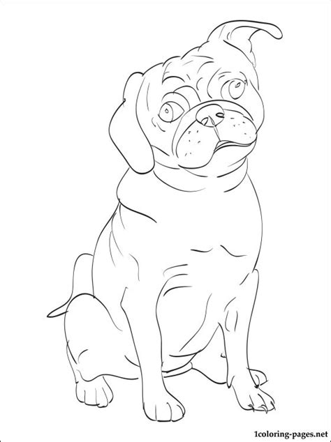coloring book pages dog breeds free coloring pages of dog and pug