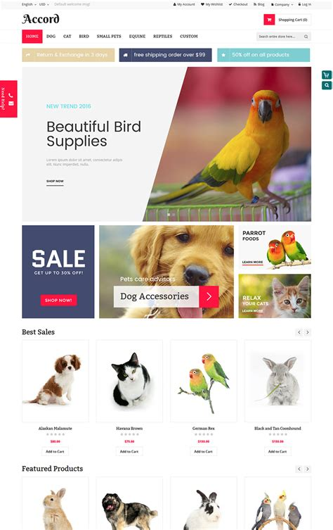 magento themes pet store accord pet store magento theme template