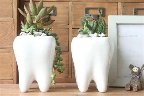 Cute Plant by 15 Vasos De Plantas Super Criativos Limaonagua